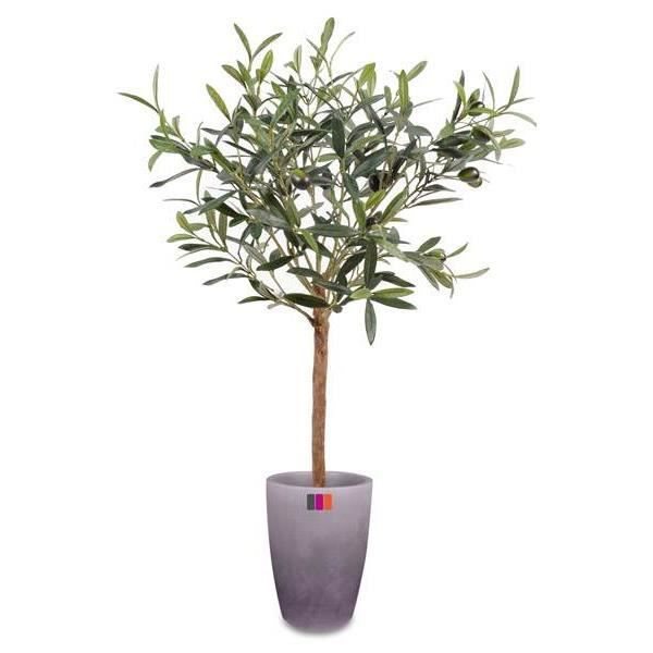 olivier plant pot 60cm arbre artificiel achat vente fleur artificielle cdiscount. Black Bedroom Furniture Sets. Home Design Ideas