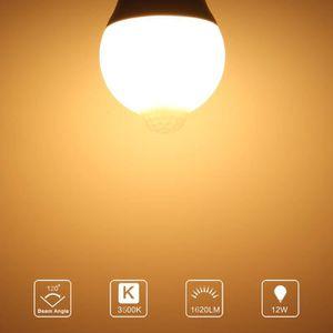 ÉCLAIRAGE INTÉRIEUR ECLAIRAGE INTERIEUR Ampoule infrarouge automatique