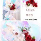 15cm Ours en mousse blanc /à faire soi-m/ême Ours roses en mousse pour la Saint-Valentin