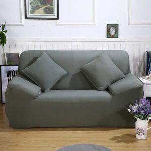 HOUSSE DE CANAPE Le sofa extensible couvre la housse de divan de pr