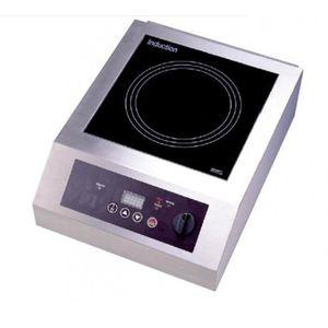PLAQUE INDUCTION Plaque à induction simple foyer - L385 x P520 x H1