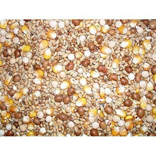 Johnston & Jeff Quatre Saisons General Economy Pigeon de mélange de graines, 20 kg