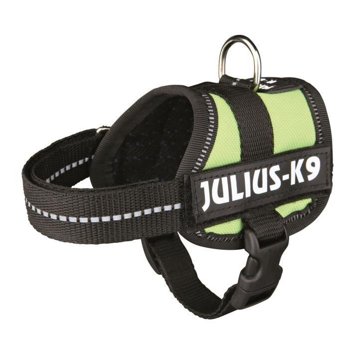 Harnais Power Julius-K9 - Baby 1 - XS : 30-40 cm-18 mm - Vert pastel - Pour chien
