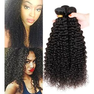 PERRUQUE - POSTICHE Sunwell tissage Kinky Curly Frisés 3 lots 20