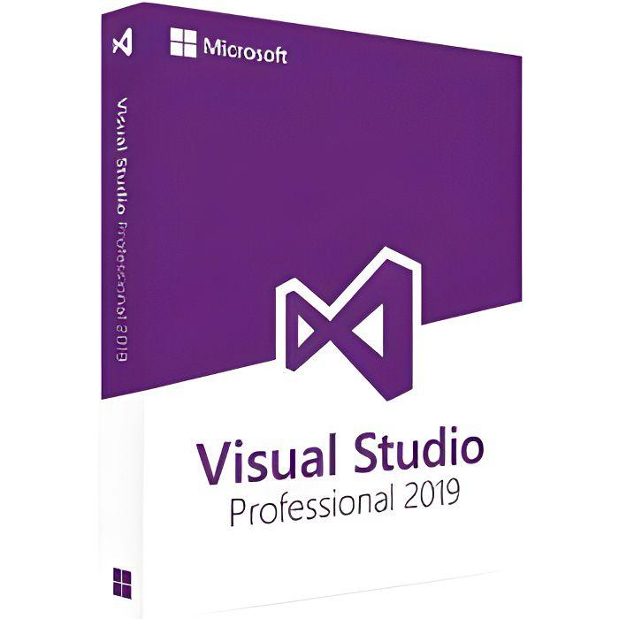 Microsoft Visual Studio 2019 Professionnel - MS0181