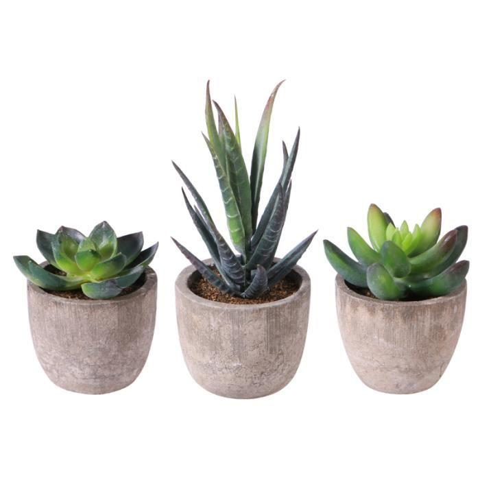 OUNONA 3 pièces Faux Succulent avec Pots Décoratif Mini Plantes Artificielles à Balle FLEUR-PLANTE ARTIFICIELLE - FLEUR SECHEE