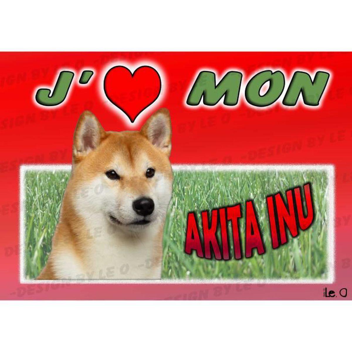 Akita Inu Achat Vente Pas Cher