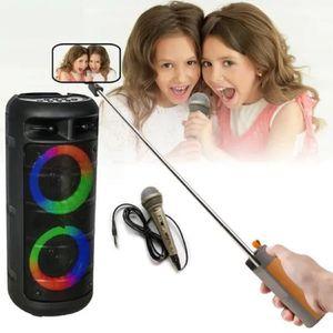 PACK SONO PACK Karaoké ENCEINTE USB MP3 BLUETOOTH FM + 2 MIC