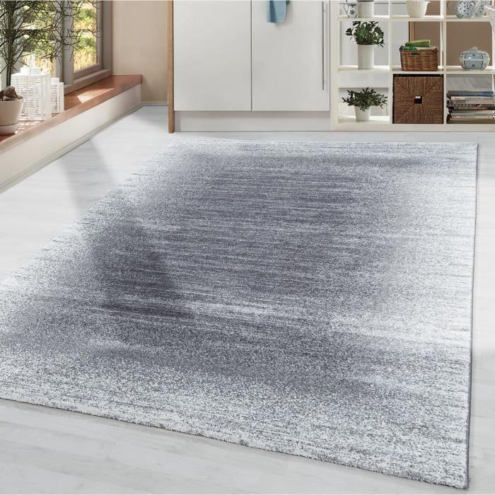 Tapis salon à poils courts tapis design moderne bordure poils doux gris crème [Argent, 80x150 cm]