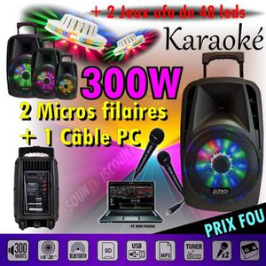 PACK SONO  KARAOKÉ ENCEINTE SONO PORTABLE USB BLUETOOTH 300W