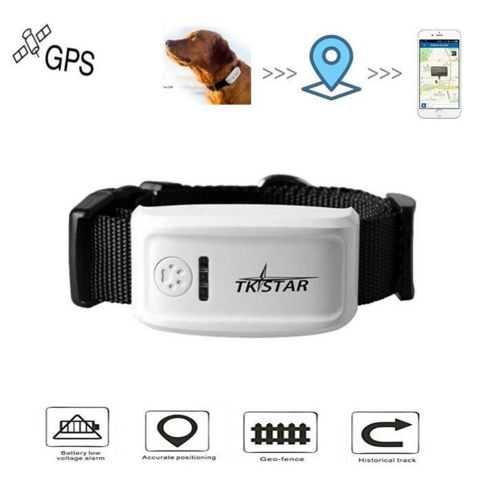 chien, chat Géolocalisateur en temps réel Pet Tracker GPS pour chien - chat Tracking GPS Collier LZX81201731_kit4962