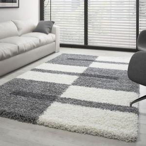 TAPIS Tapis Shaggy design pile longue - Gris et blanc +
