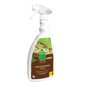 Plante anti puceron latest with plante anti puceron - Anti puceron naturel ...