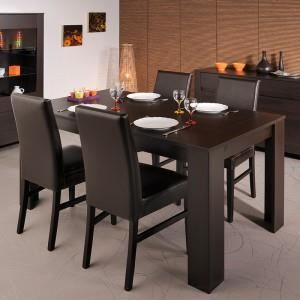 table salle a manger wenge pas cher