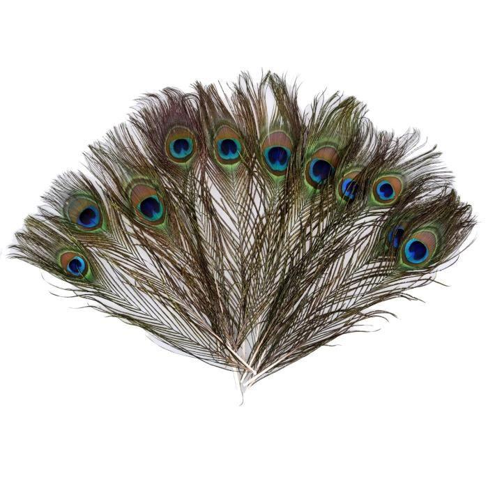 12 plumes de paon plumes d'oeil de paon naturel décoration de fête bricolage