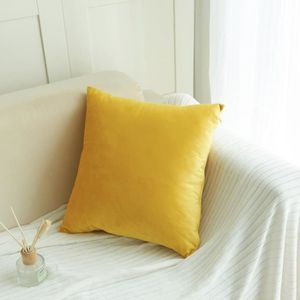 COUSSIN Coussin en velours Canapé taille Throw Coussin Hom
