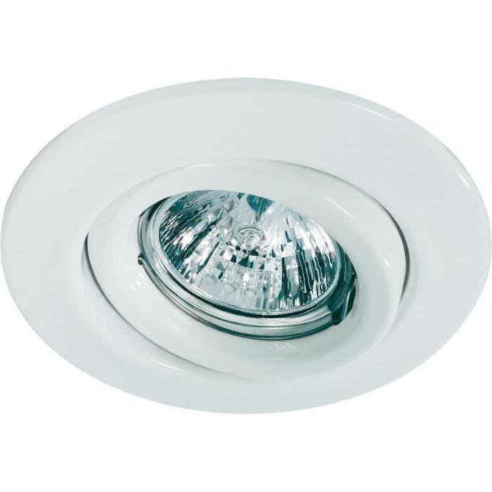 Paulmann 98971 encastré Quality Line 51 mm blanc, orientable