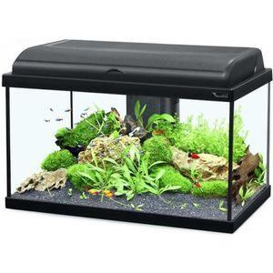 aquarium 60 litre achat vente aquarium 60 litre pas. Black Bedroom Furniture Sets. Home Design Ideas