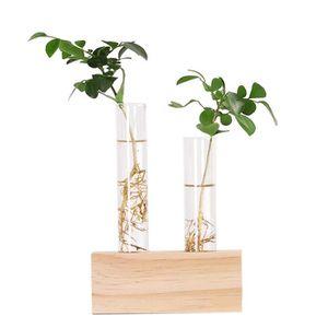 VASE - SOLIFLORE Verre en Cristal Tube À Essai Vase Fleurs Plantes