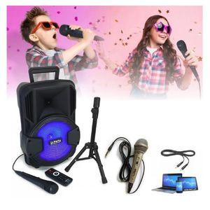 PACK SONO Pack Karaoké + 2 micros ! ENCEINTE SONO + USB MP3