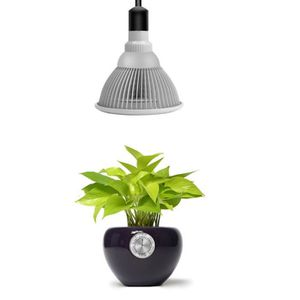 lampe horticole achat vente lampe horticole pas cher cdiscount. Black Bedroom Furniture Sets. Home Design Ideas