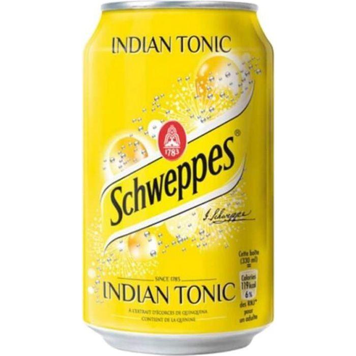Schweppes Indian Tonic 33cl (pack de 24)