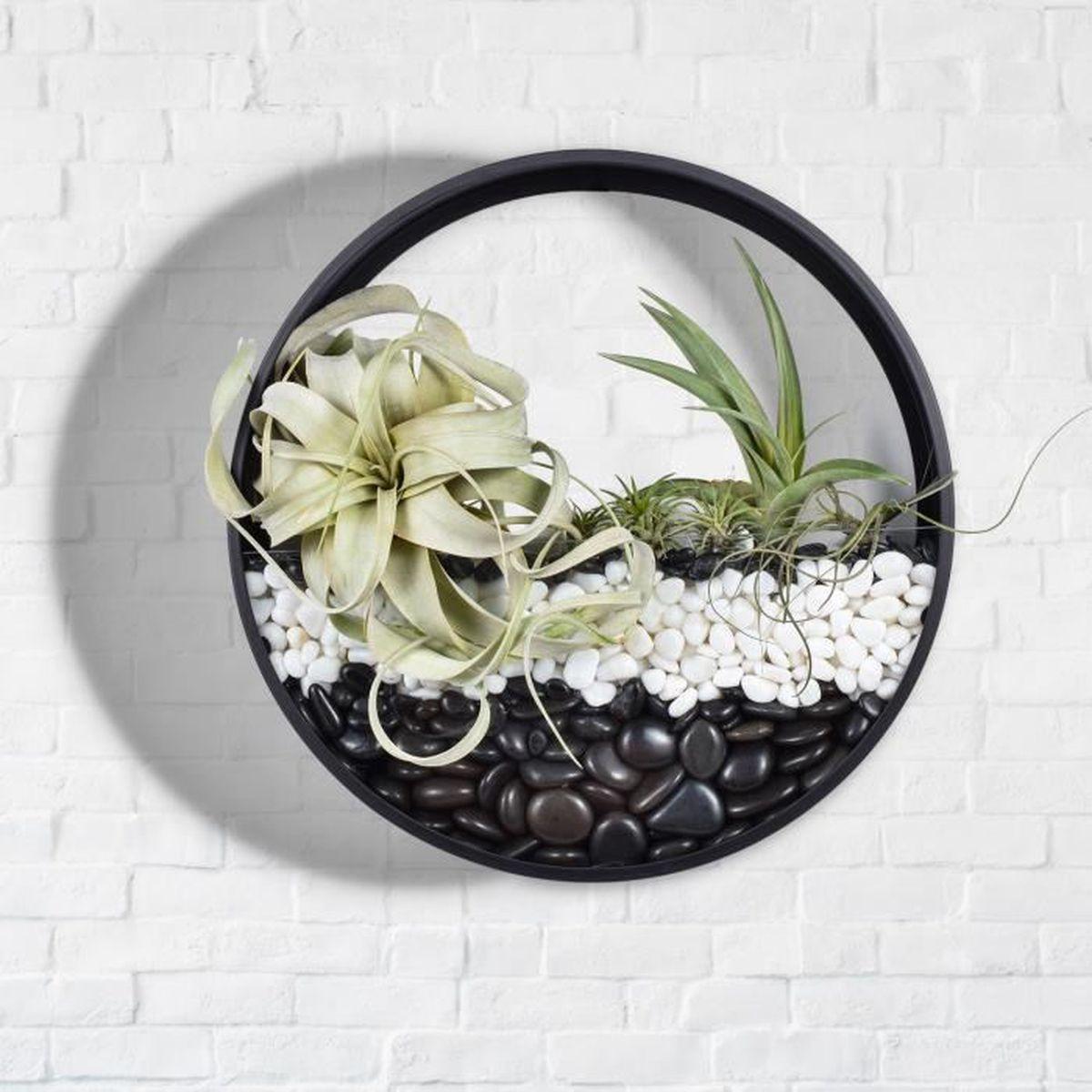 """Jardinière À Suspendre Ikea mornbee muraux pots à suspendre maison décor pots de fleurs rond métal de  fer art vase jardinières pour succulente cactus,m 8"""""""
