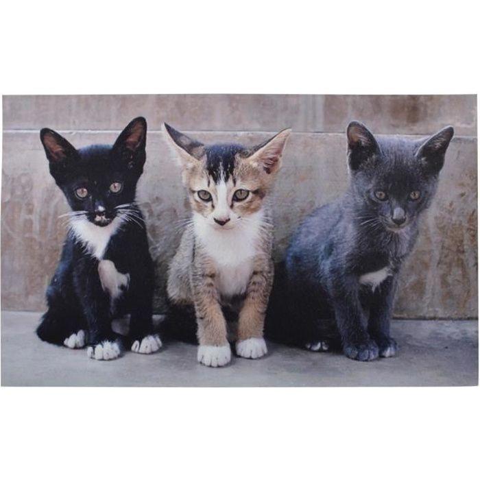 Tapis paillasson imprimé chats - 75 x 45 cm