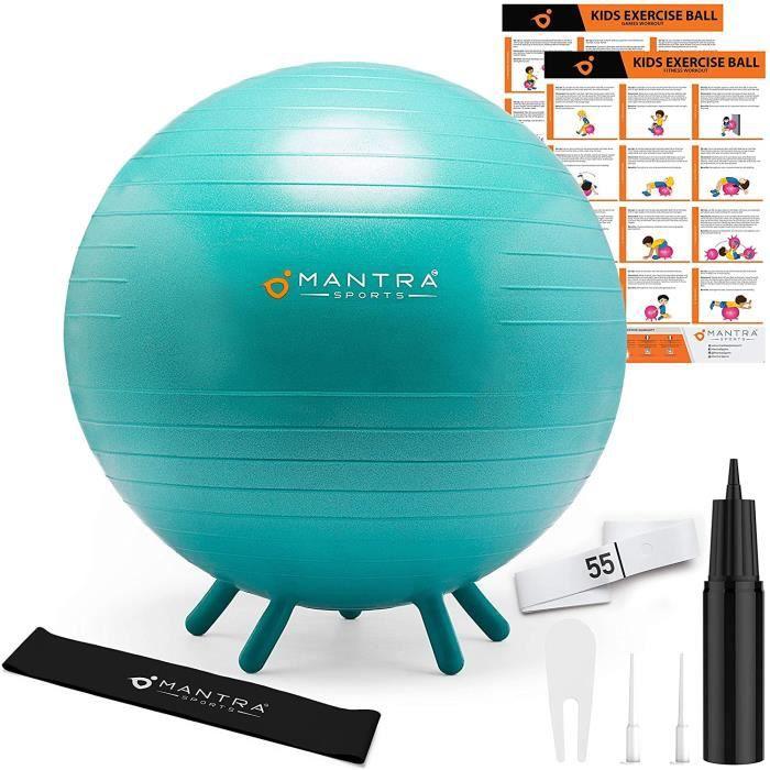Ballon Fitness Swiss Ball - Ballon Fitness - Chaise Ballon Pilates & Yoga - 45 cm - 55 cm Assise pour Bureau, Gym, Maison & Sal74