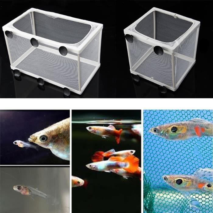 Aquarium,Aquarium à poissons Guppy Guppy, élevage de poissons, piège à gaze pour bébés, boîte isolateur S-L - Type S
