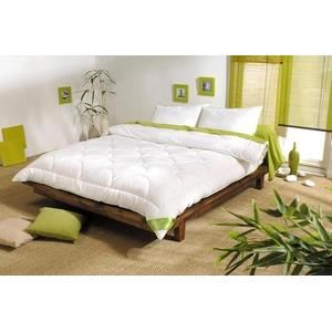 couette nature espritzen 200x200 450gr achat vente couette cdiscount. Black Bedroom Furniture Sets. Home Design Ideas