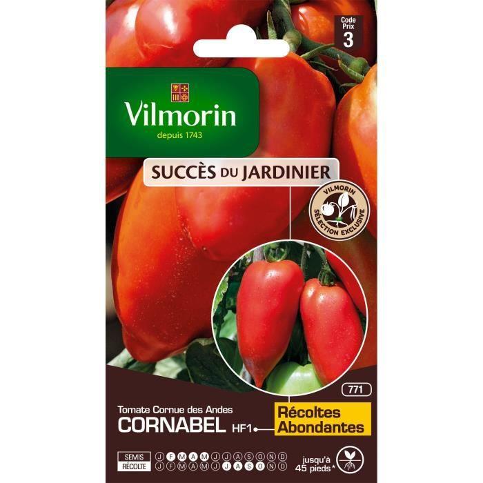 VILMORIN Tomate Cornabel HF1 Sachet de graines