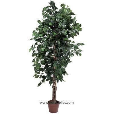 Ficus artificiel 180 cm vert 1512 feuilles tron achat for Ficus artificiel