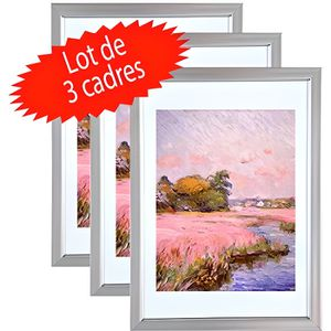CADRE PHOTO Lot de 3 cadres photo Argent A4 (21x29.7 cm) - Cad