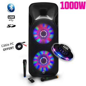 PACK SONO Enceinte KARAOKE 1000W mobile sur batterie Party B