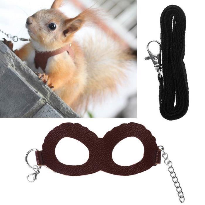 Harnais Laisse pour Hamster & Lapin, Pet Laisse Réglable Harnais Réglable Corde (S, 2#)
