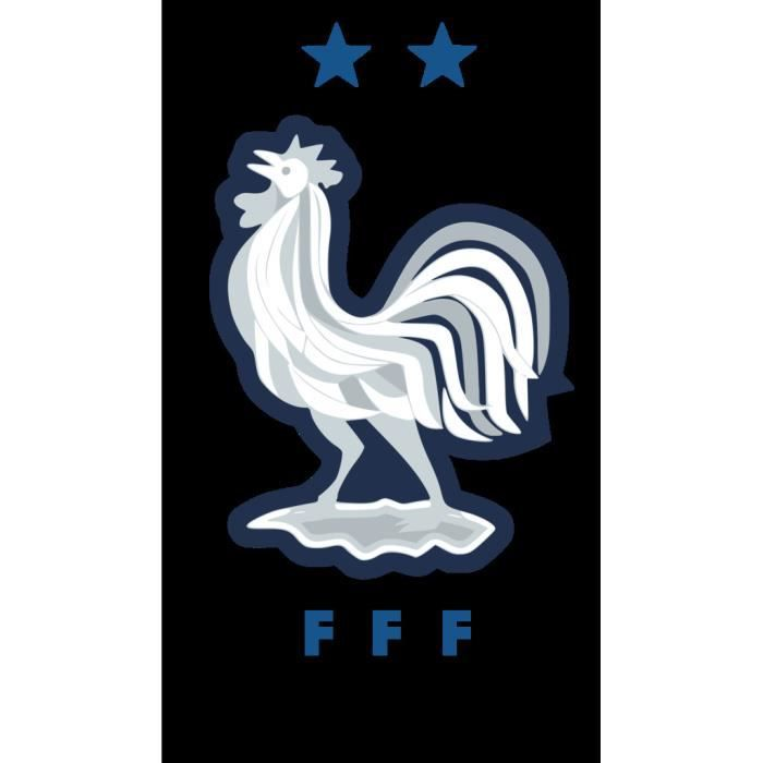 Poster Affiche Blason France Champion du Monde Football Equipe National Embleme Sport 42cm x 73cm