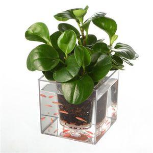 JARDINIÈRE - BAC A FLEUR 12*12*12cm Pot Fleurs, Pot de fleurs decoration, P