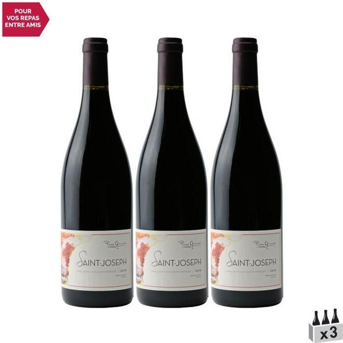 Saint-Joseph Rouge 2019 - Lot de 3x75cl - Pierre Gaillard - Vin AOC Rouge de la Vallée du Rhône - Cépage Syrah