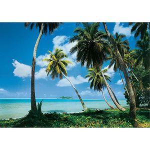 Nappes Papier Peint-Palmiers-île Coucher de Soleil Plage Mer Beach Mer Image 2709 V