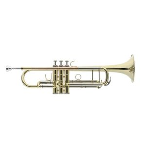 TROMPETTE Trompette en Sib, branche d'embouchure en cuivre r