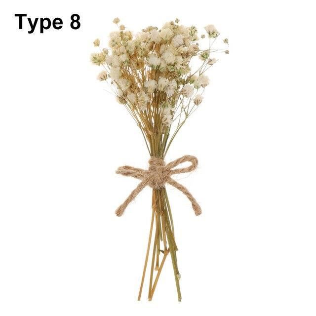 Naturel réel Mini fleurs séchées Bouquets gypsophile plante tiges coloré bricolage artisanat maison mariage décoratif Ph ES15953