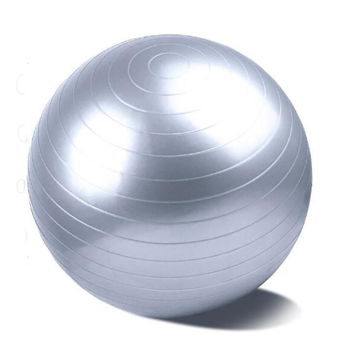 GOBRO,Swiss ball - Ballon de gym /argent / 75cm/Biens professionnels