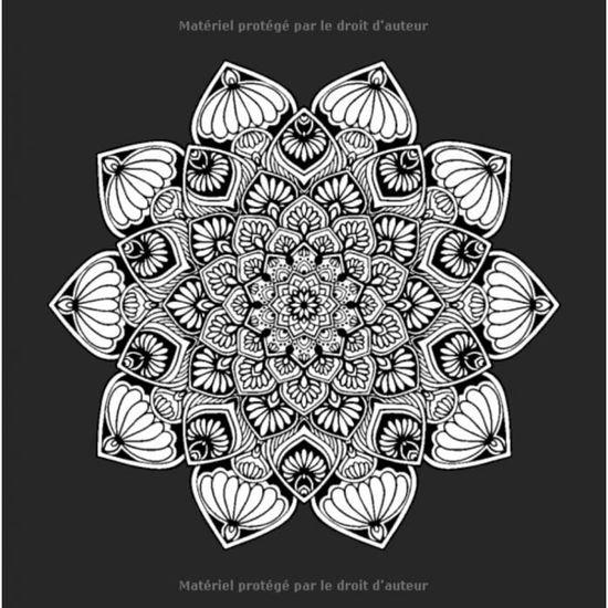 Livre Cahier Dessin Coloriage Mandalas Sur Fond Noir 50 Dessins Au Format 20 9 X 20 9cm Pour Adultes Ado Anti Stress Achat Vente Livre De Coloriage Cdiscount
