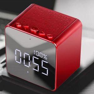 ENCEINTE NOMADE Enceinte Bluetooth Mini Portable, FM Radio Ecran L