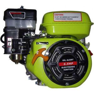MOTEUR COMPLET Bc-elec 92441 Moteur essence 6,5 Hp, 4,8 Kw ave…