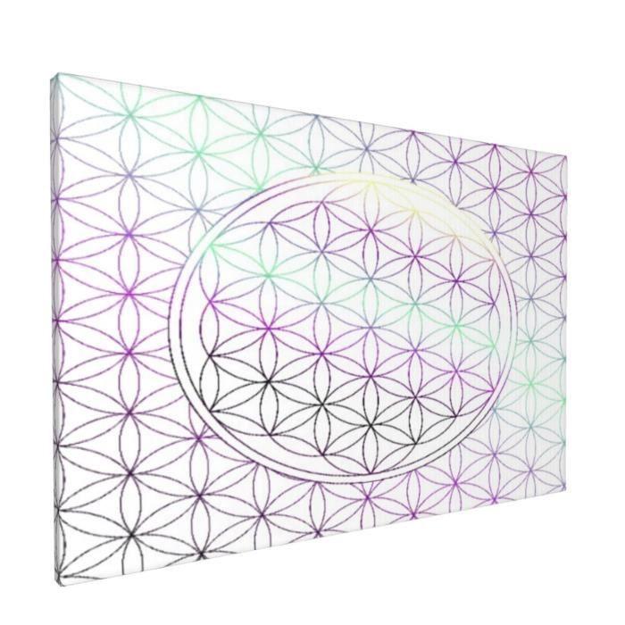 PATINISA Impression sur Toile,Motif géométrique abstrait comme forme de fleur,Décoratif Art Prints Toile Photos Pour La Maison
