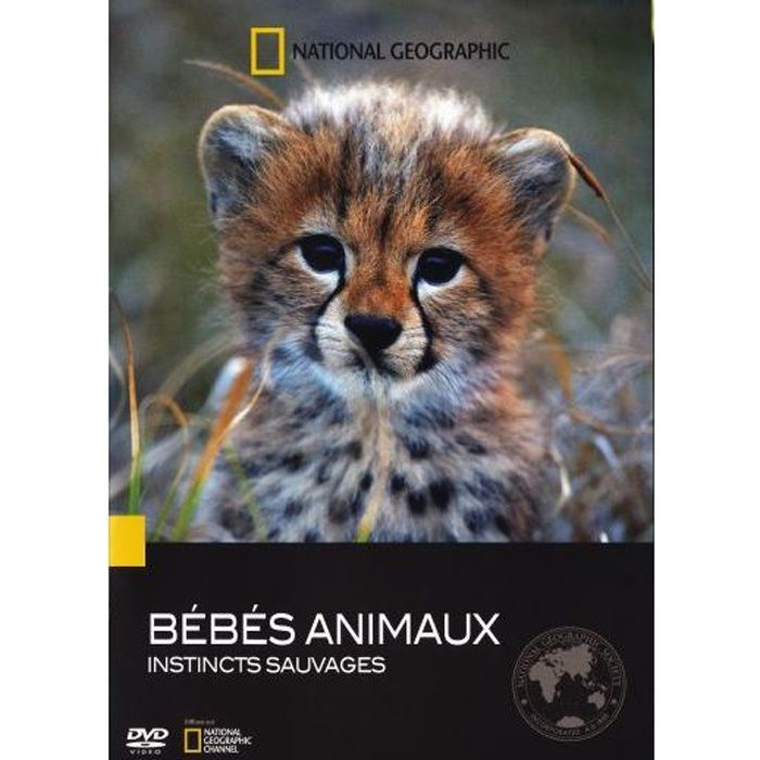 Dvd b b s animaux instincts sauvages en dvd film pas cher - Bebe animaux sauvage ...