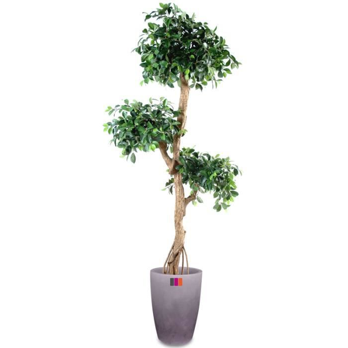 Ficus artificiel retusa crazy 180cm achat vente fleur for Plantes artificielles soldes
