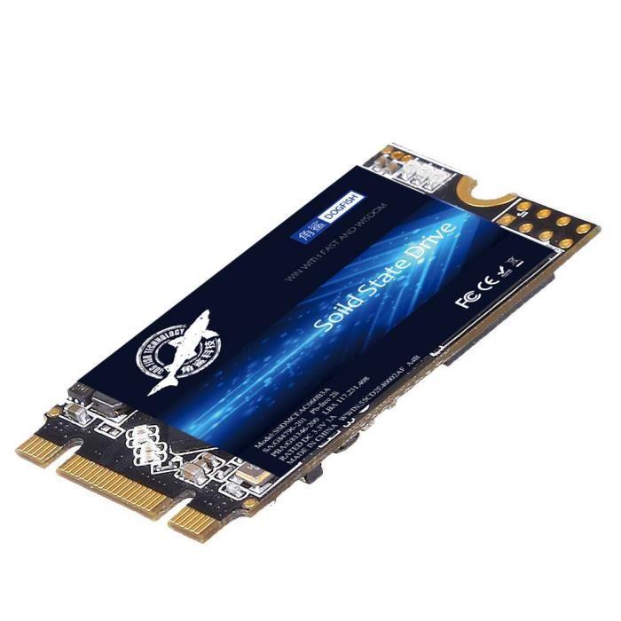 DISQUE DUR SSD SSD M.2 2242 1To Dogfish Ngff Ordinateurs De Burea